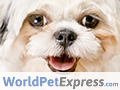 Up To 80% Off Pet Meds